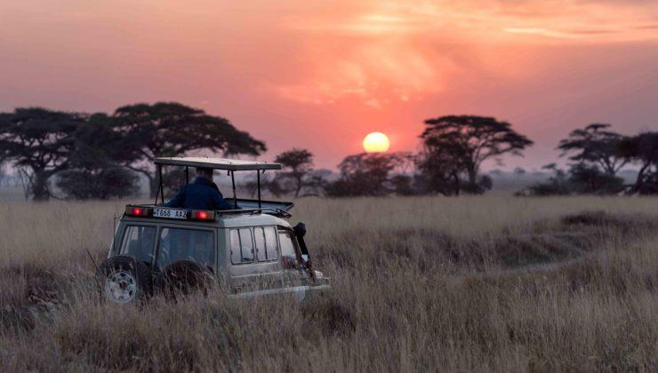 safari-jeep-slide