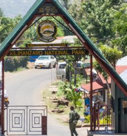Marangu-Route-4-750x420