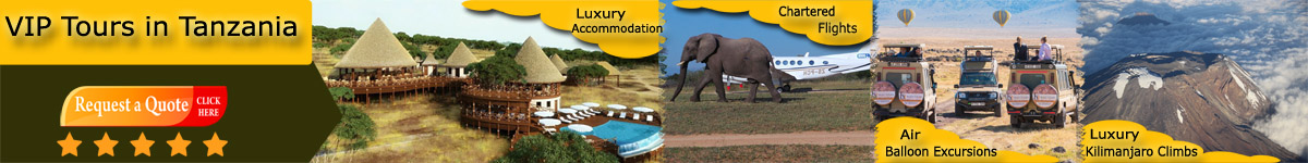 Best Tanzania VIP Tours