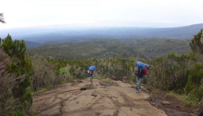 kilimanjaro machame